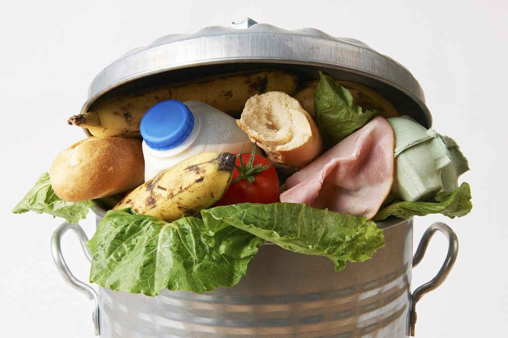 Food Waste in a Garbage Can - Image Courtesy of U.S. Department of Agriculture